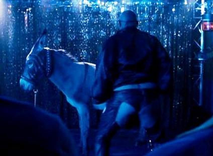 Donkey-show-image