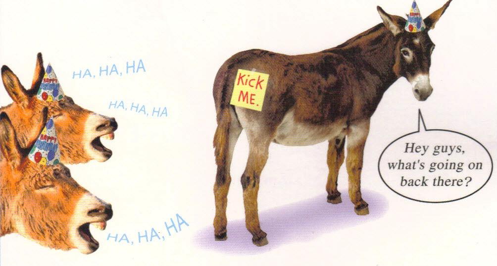 Donkey Birthday Card Girlboxer1970