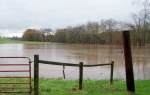 Conewago Creek swallows the farmer's fields