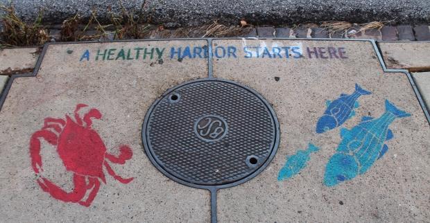 Inner Harbor 348