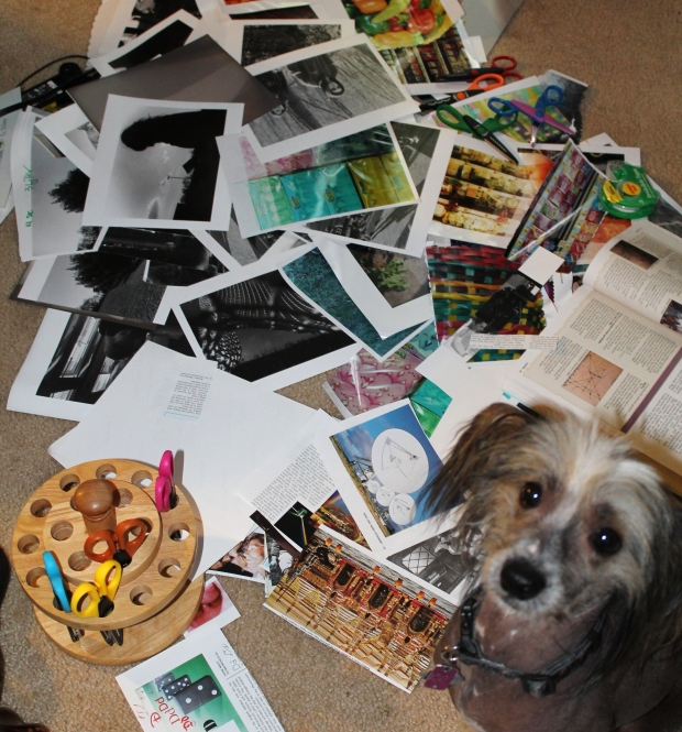 My dog was nosy and not helpful as he                     walked over my materials.
