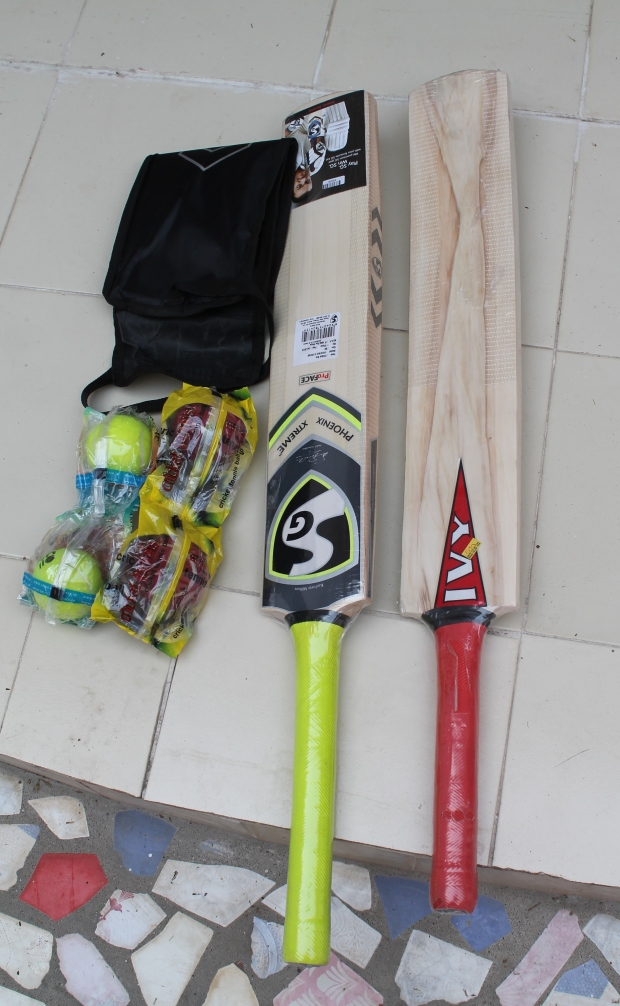 A cricket bat and balls for each home!
